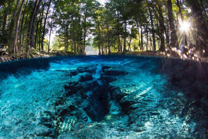 Ginnie Springs | Gainesville, FL
